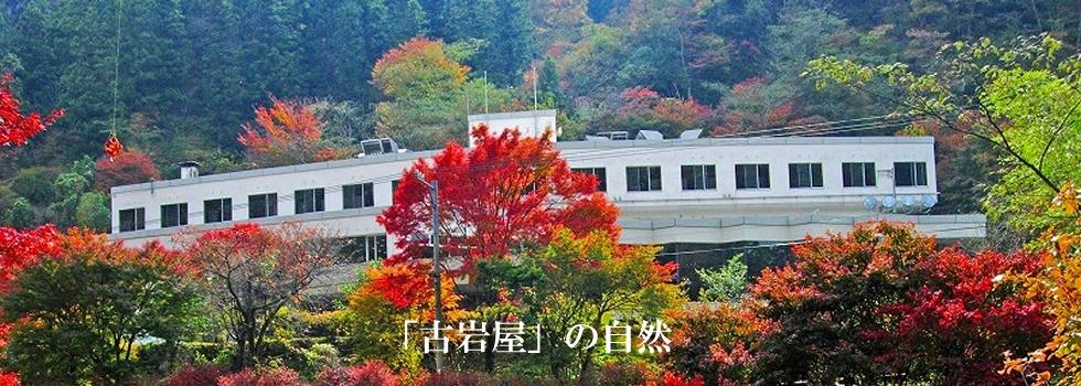 古岩屋の紅葉