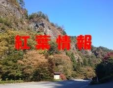 古岩屋周辺の紅葉情報
